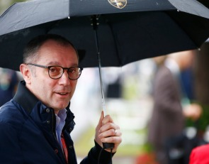 INSIGHT: What does Domenicali bring to F1's top job?